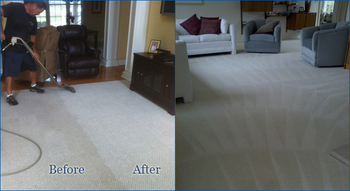 Carpet Cleaning, Lewes
